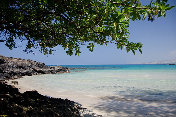 Shadows of Kaunaoa Beach stock photo