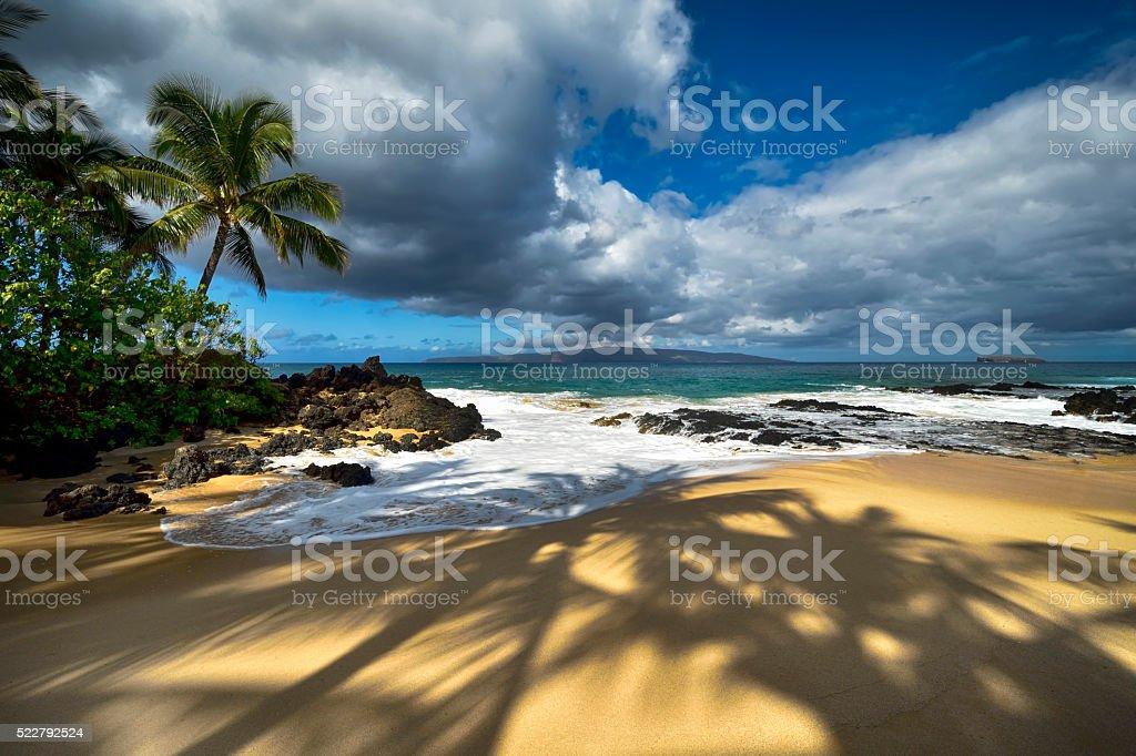 Shadows of palm trees at Secret beach, Maui, Hawaii, USA stock photo