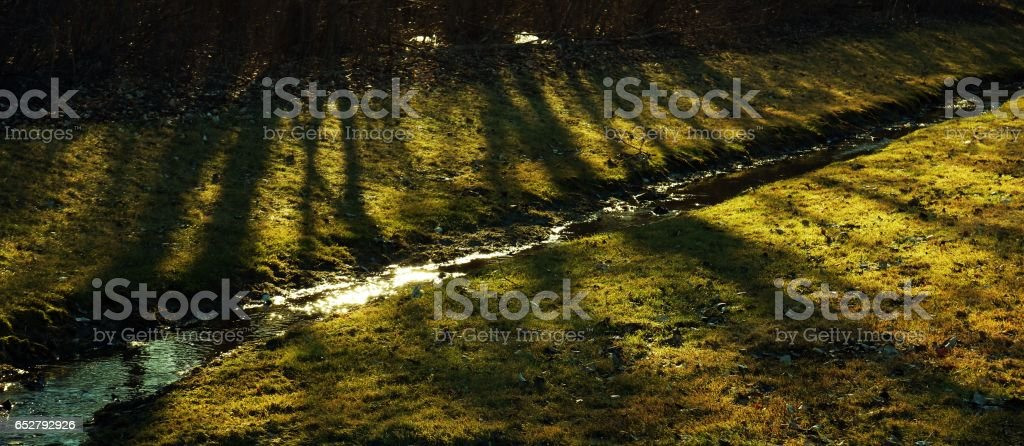 Shadows of Trees in a Babbling Brooke stock photo