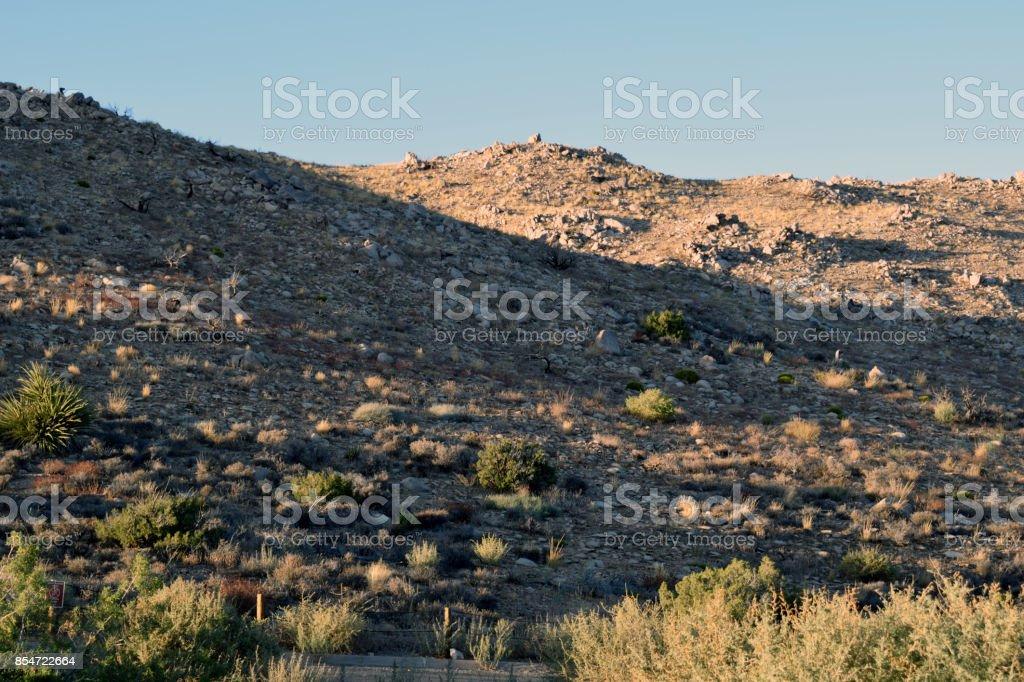 A Shadowy Landscape at Joshua Tree stock photo