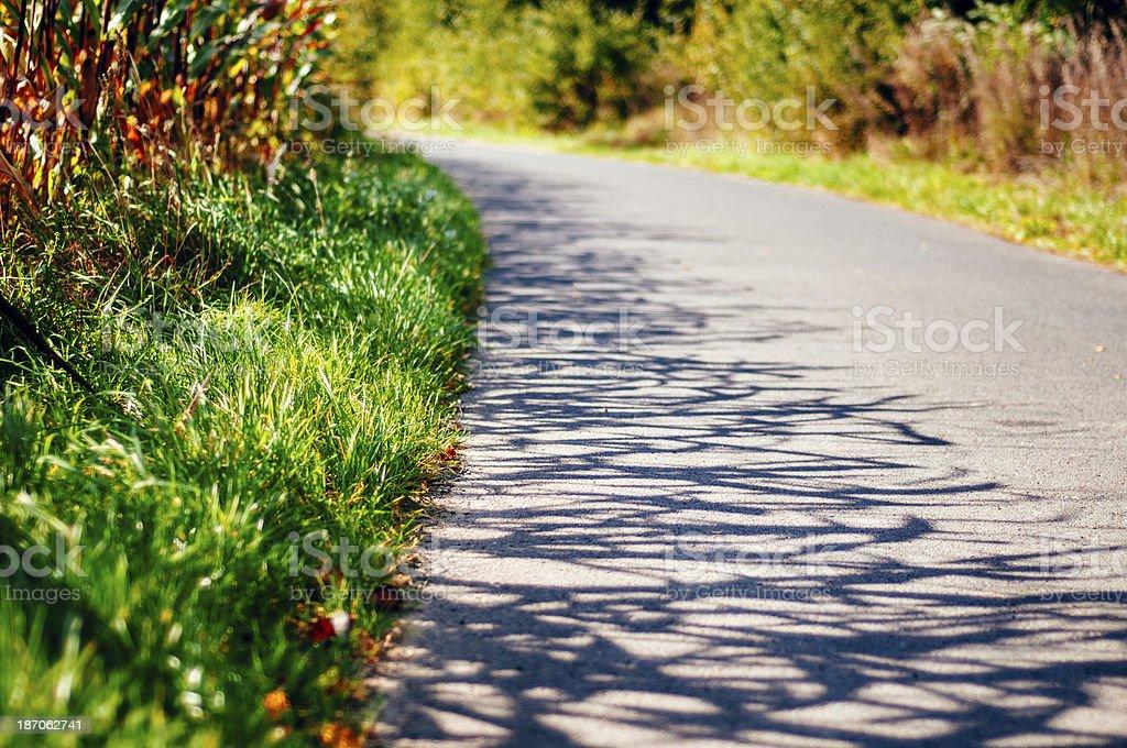 Shady field road royalty-free stock photo
