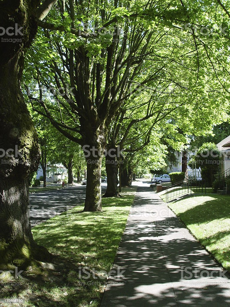Shady Lane Sidewalk royalty-free stock photo