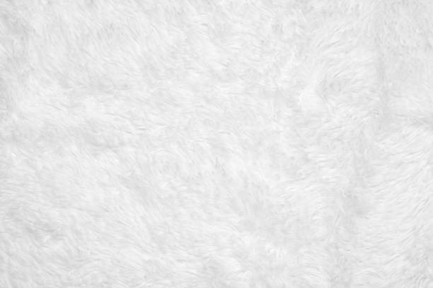 Shaggy blanket texture White shaggy blanket texture as background. animal hair stock pictures, royalty-free photos & images