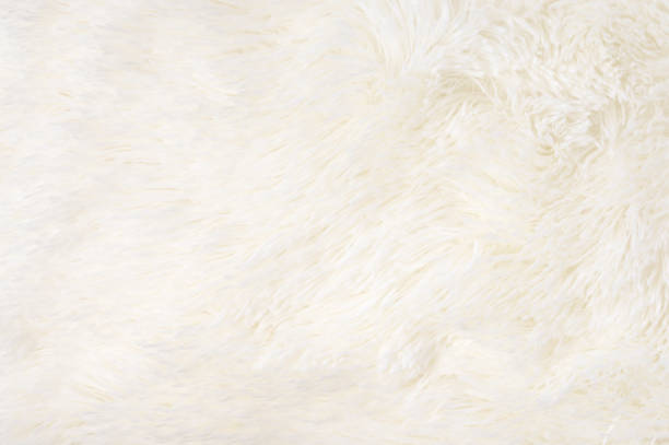 shaggy fur texture - fluffy stock photos and pictures