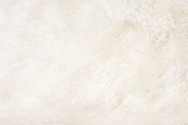 Shaggy fur texture stock photo