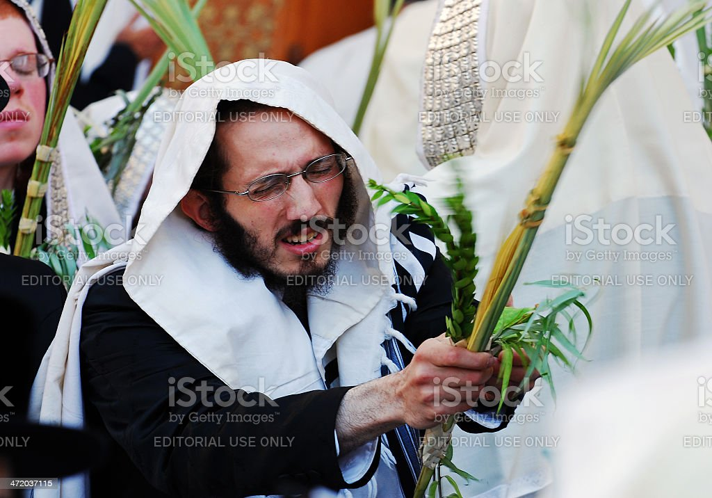 shaking a Lulav during the Festival of Sukkot. stock photo