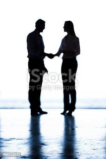 647200468 istock photo Shaking Hands 486243272