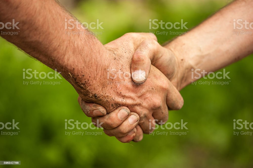 Shaking Hands royalty-free stock photo