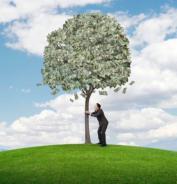 Shaking Money Tree A businessman trying to shake money out of a money tree. money tree stock pictures, royalty-free photos & images