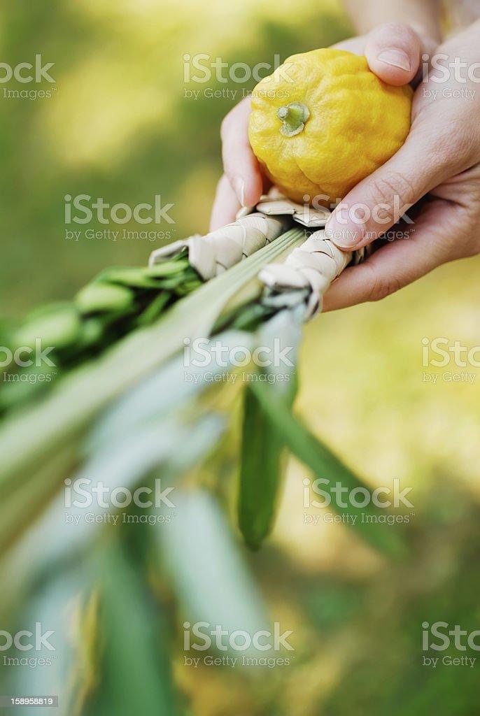 Shaking the Lulav palm branch in celebration of Sukkot stock photo