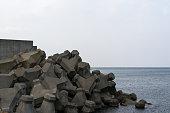 tetrapod Shakotan 半島