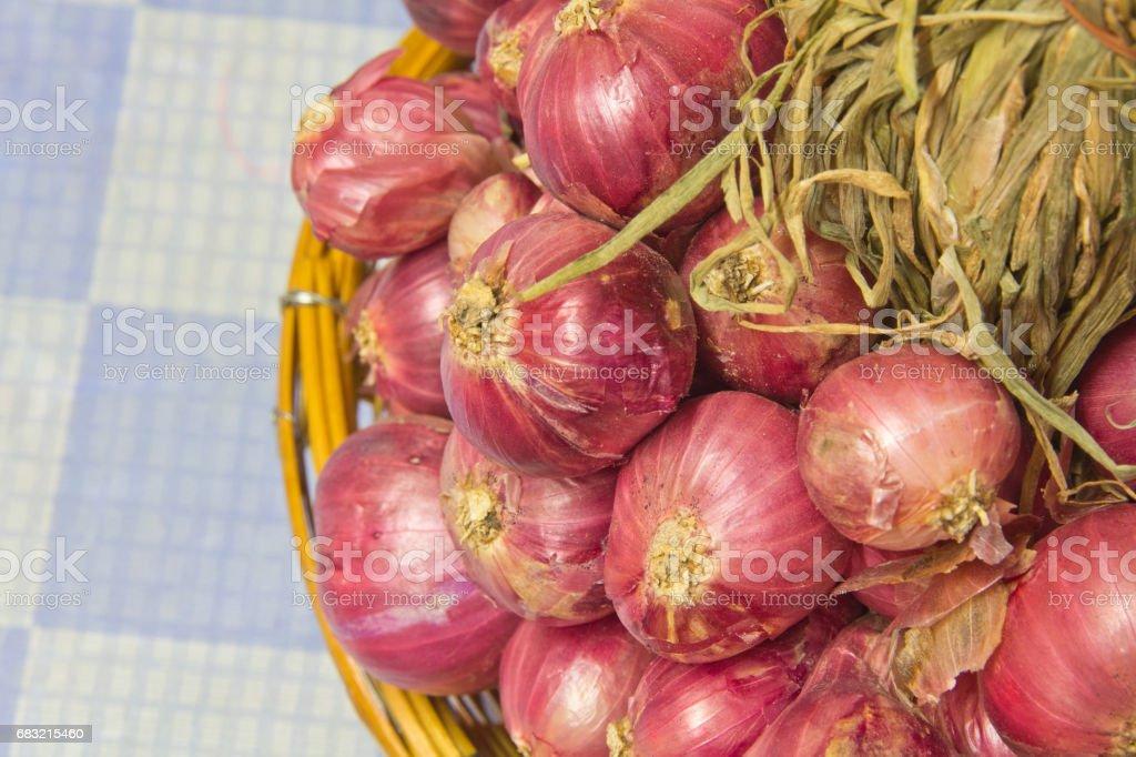 青蔥是烹調每個家庭的蔬菜。 免版稅 stock photo