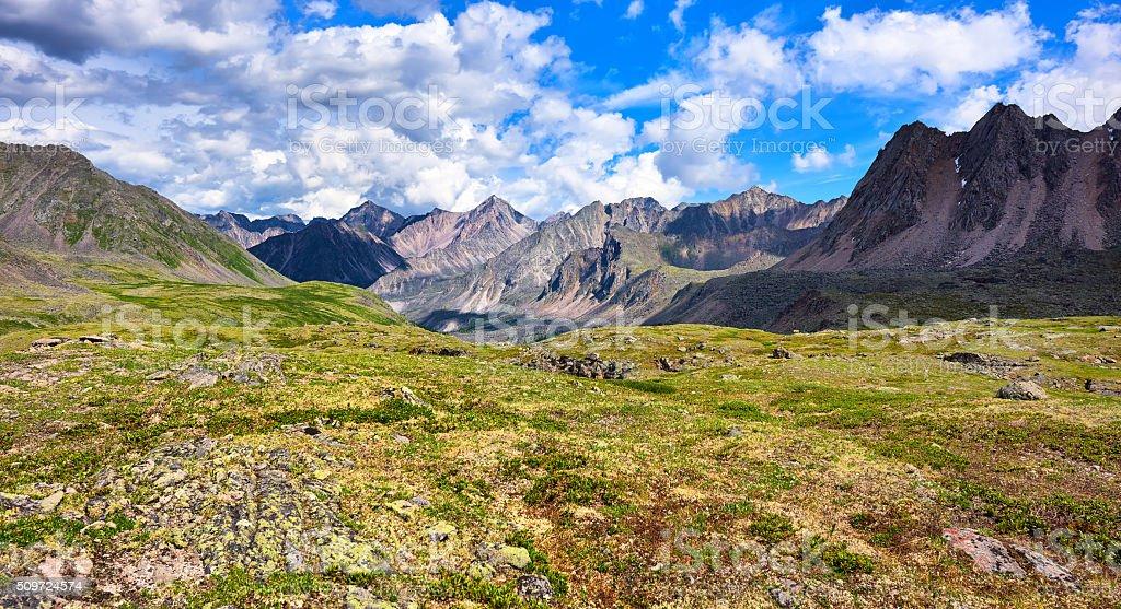 Shallow alpine tundra . Primordial nature stock photo