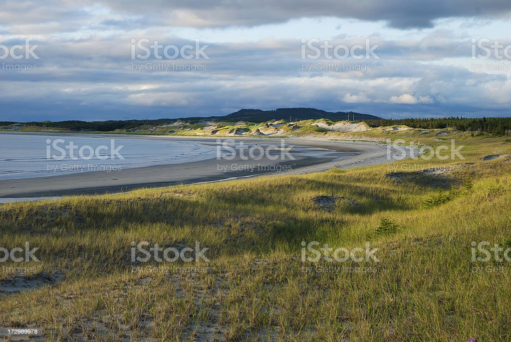 Shallow Bay royalty-free stock photo