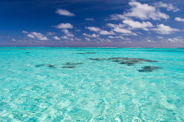 Shallow coral reef in turquoise transparent water, Cook Islands The gorgeous turquoise transparent water of the Aitutaki lagoon spotted by shallow coral reef. Uncontaminated environment in the Aitutaki atoll, Cook Islands, South Pacific Ocean. south pacific ocean stock pictures, royalty-free photos & images