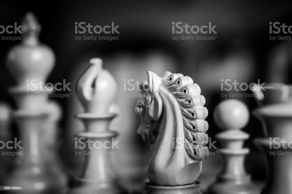Shallow focus image of wooden Knight chess piece seen in monochrome. stock photo
