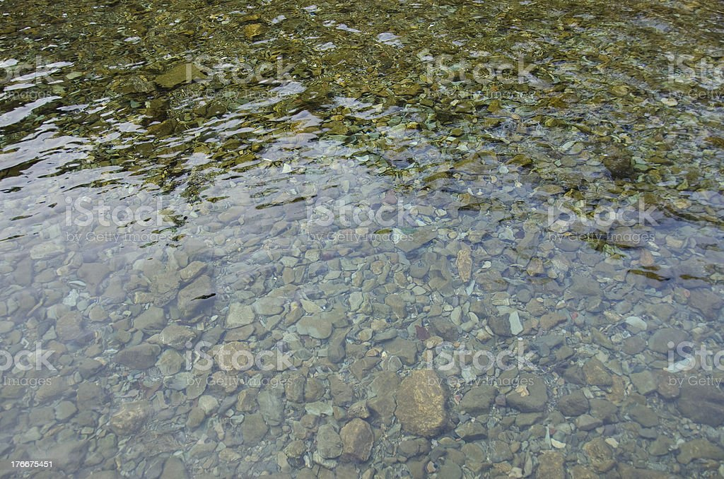 Shallow water royalty-free stock photo