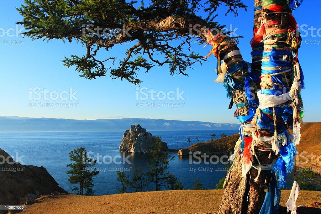 Shaman tree stock photo