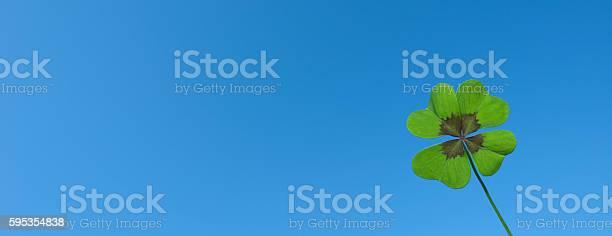 Shamrock lucky clover picture id595354838?b=1&k=6&m=595354838&s=612x612&h=tanmhrnw9ykxgkjc2dbsozpb8g wmiywsvbtnyhofck=