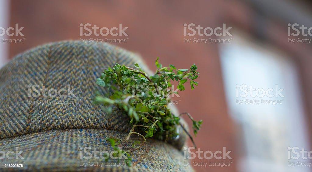 Shamrock on a tweed hat stock photo
