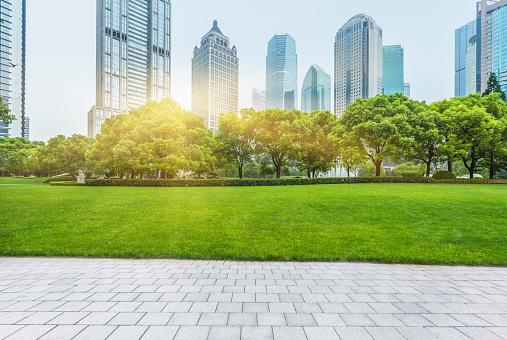 shanghai central park