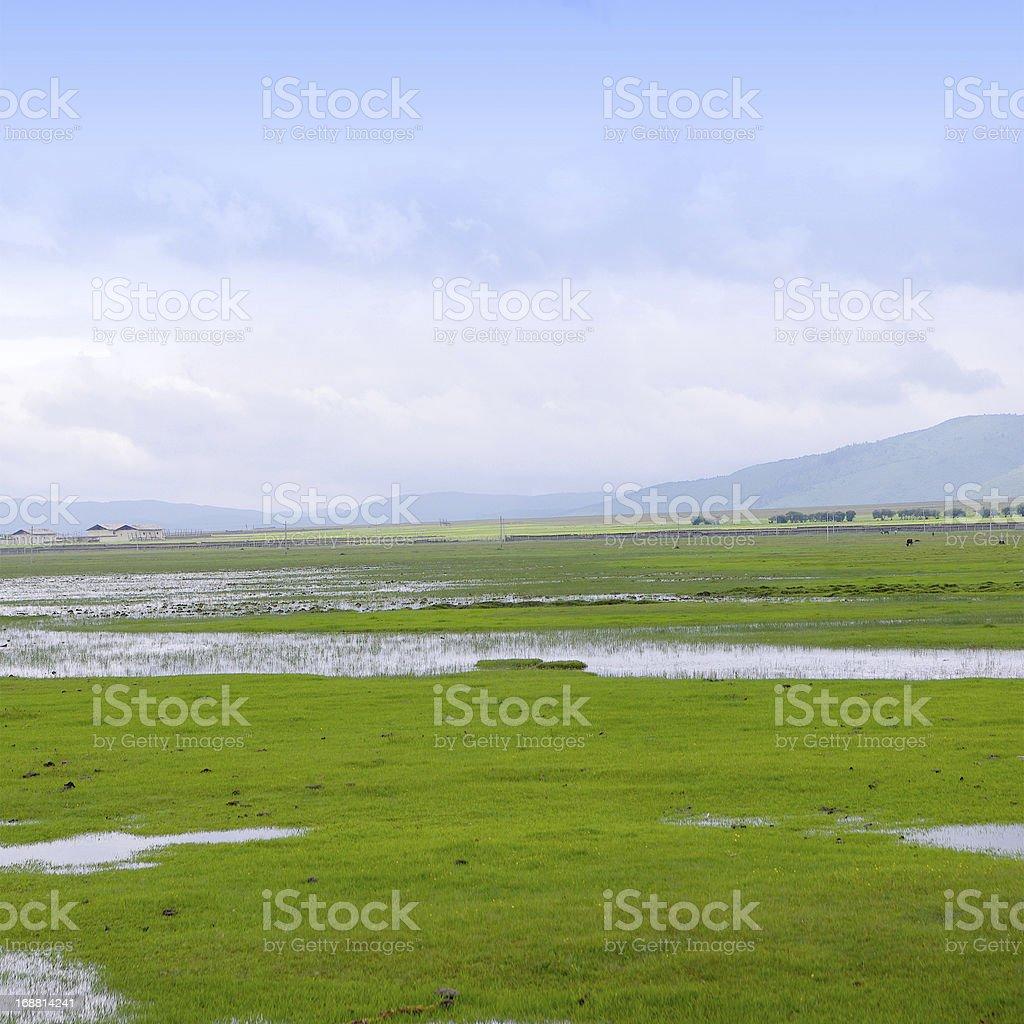 Shangri-La in Yunnan royalty-free stock photo