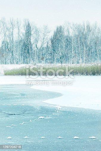 Shapes on Frozen Lake
