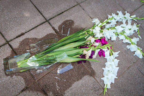 Royalty Free Broken Flower Vase Pictures Images And Stock Photos