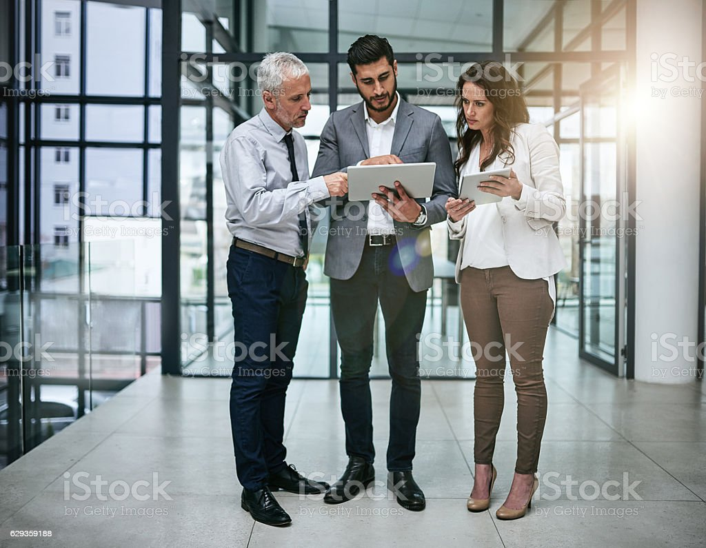 Shared knowledge brings shared success stock photo