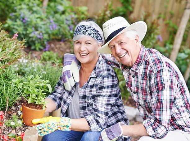 In einem Liebe Garten – Foto