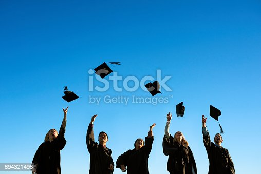 istock Sharing in the celebrations of a glorious day 894321498