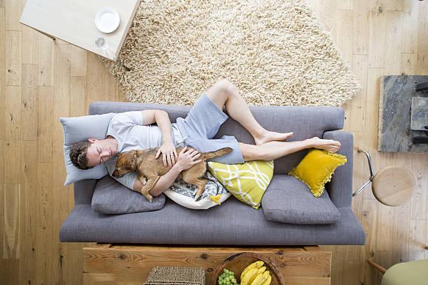 sharing the dog's life - faire un somme photos et images de collection