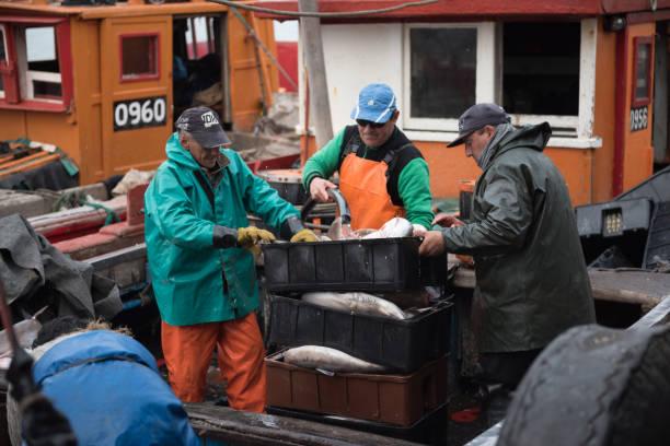 Shark artisanal fishing boat stock photo