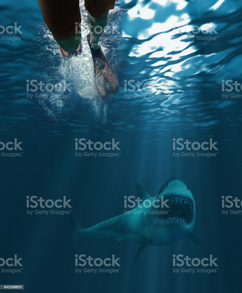Shark attack stock photo