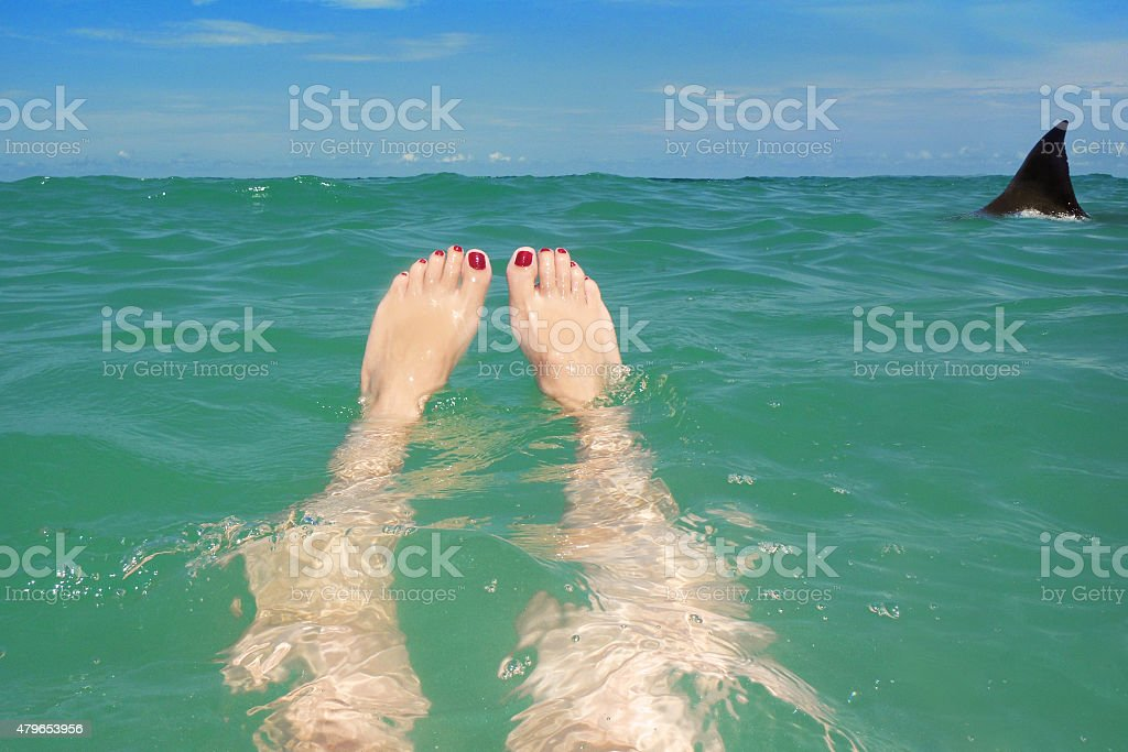 Shark Lurking Around Woman Floating In Ocean stock photo