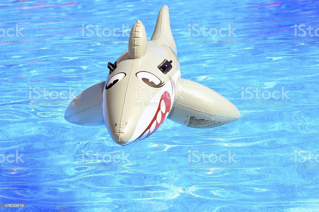 Rekin zabawka w basenie – zdjęcie