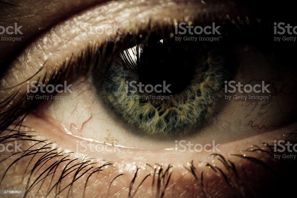 Sharp macro of an eye royalty-free stock photo