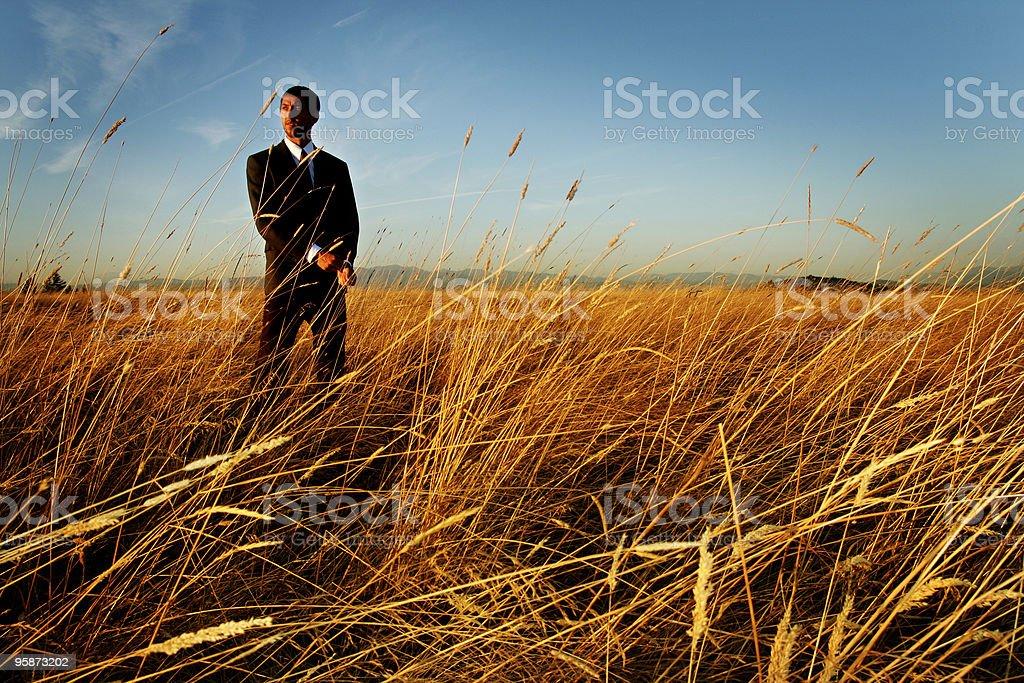 sharp2 royalty-free stock photo