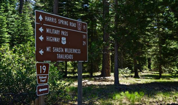 Shasta-Trinity Forest Sign Northern California's Cascade Range. Shasta-Trinity National Forest Zone. Mt. Shasta Wilderness/East Edge. national forest stock pictures, royalty-free photos & images