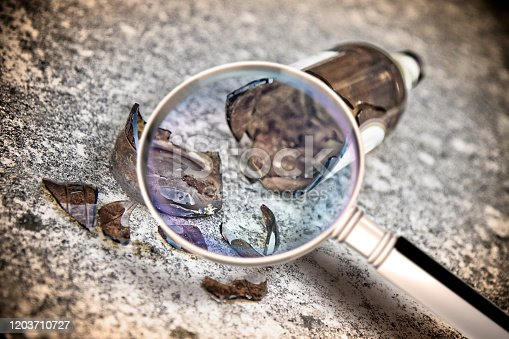 istock Shattered beer bottle resting on the ground - Research into the motivations of alcoholism - Concept image seen through a magnifying glass 1203710727