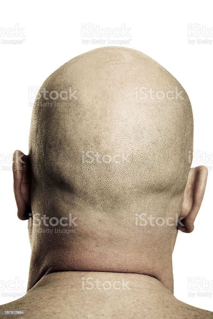 Shaved Man Head Rear View stock photo
