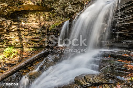 The waters of Shawnee Falls past a large cedar log in Ricketts Glen State Park of Pennsylvania.