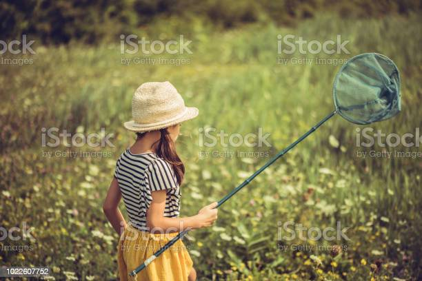 She is chasing butterflies in a field full with wild flowers picture id1022607752?b=1&k=6&m=1022607752&s=612x612&h=7olucsde5hukcceuspmk0rblztgqqnosrdqu0lehnm4=