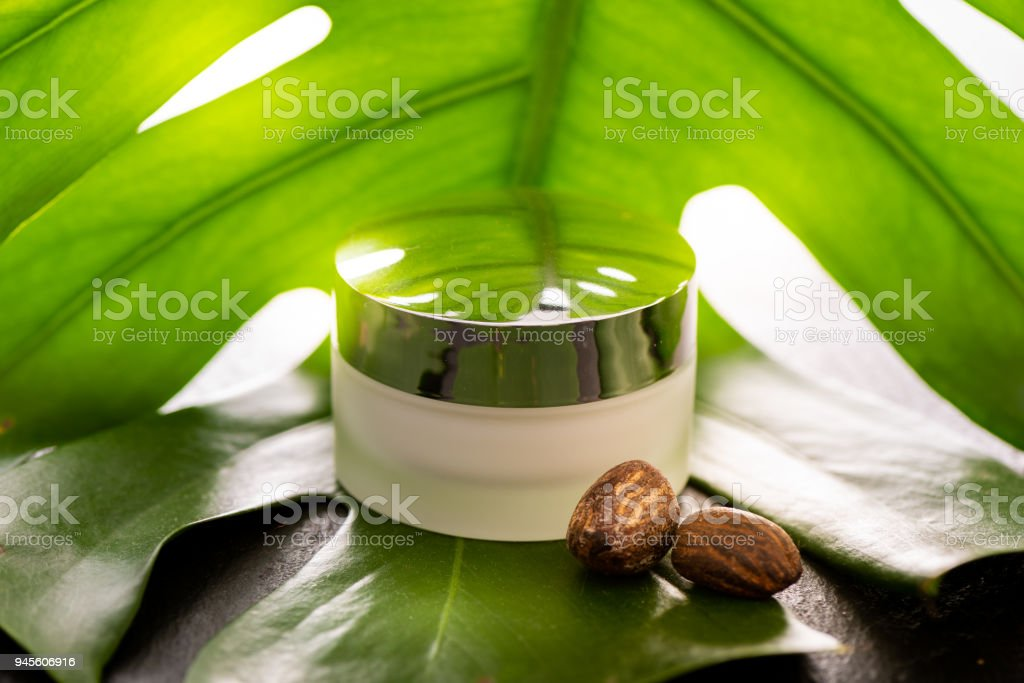 Shea butter nuts and a jar of shea butter on a green leaf - foto stock