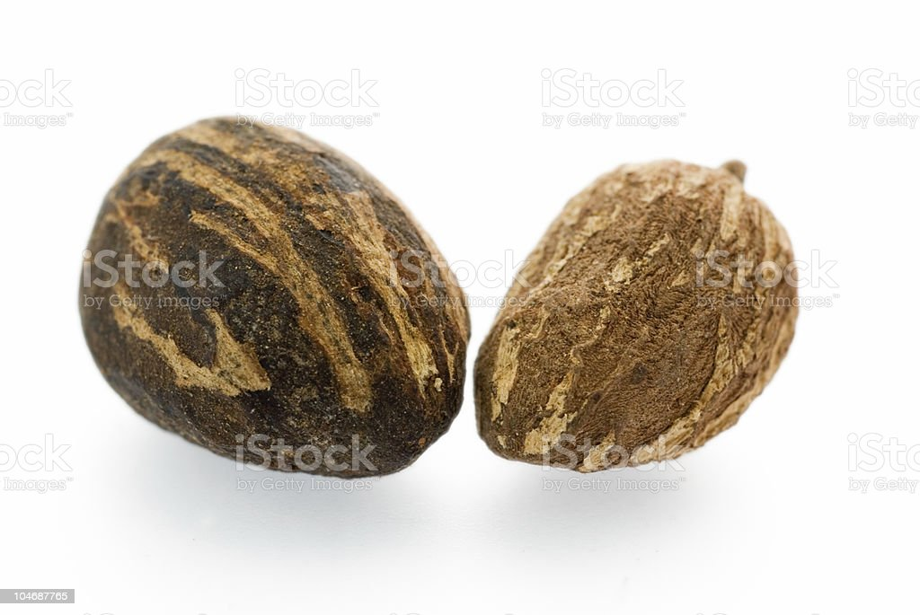 Sheabutter nuts royalty-free stock photo
