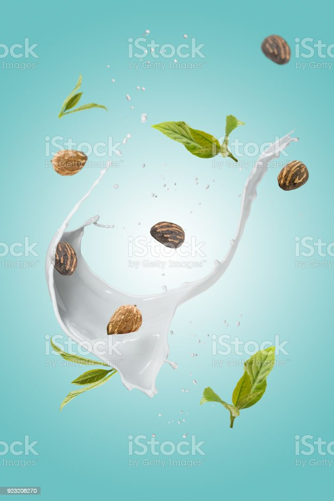 Shea butter nuts with splash - foto stock