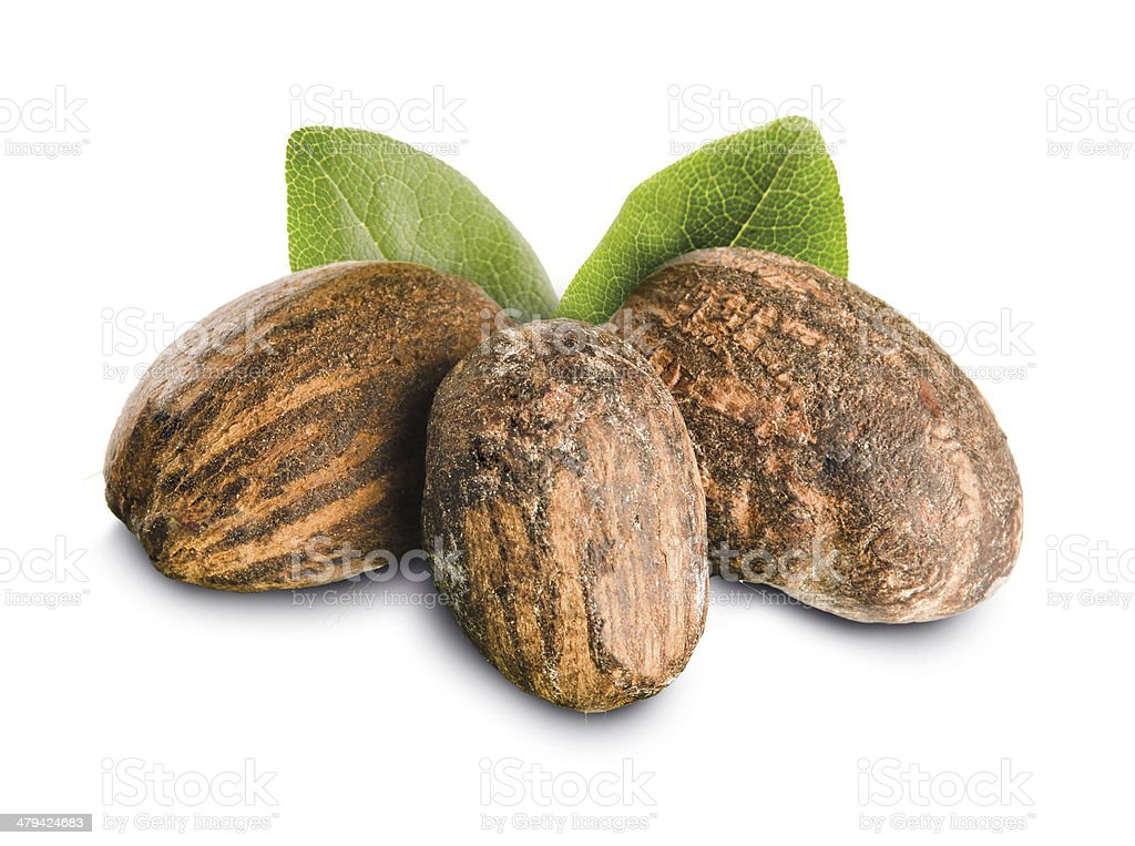 Shea nuts and leaves stock photo