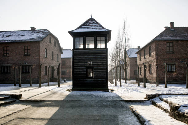 Shed guard in Auschwitz. Museum Auschwitz - Birkenau, holocaust museum. Anniversary Concentration Camp Liberation. Barbed wire around a concentration camp. – zdjęcie