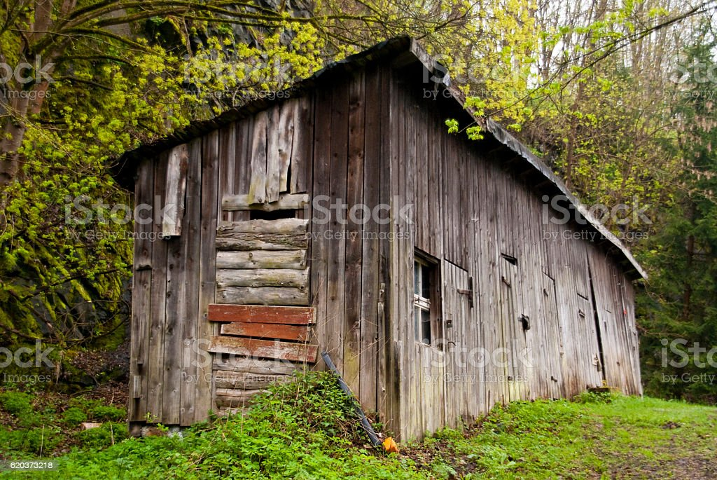 Shed in Harz Mountains, Germany foto de stock royalty-free