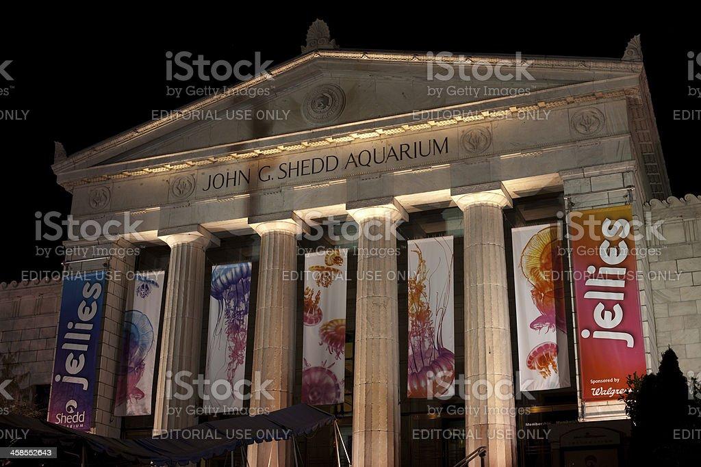 Shedd Aquarium with Jellyfish Exhibit royalty-free stock photo
